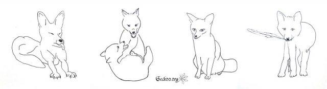 Les vulpes : renard et fennec !
