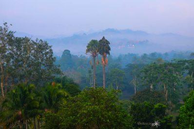 Indonésie #1 – Java, l'île aux milles couleurs