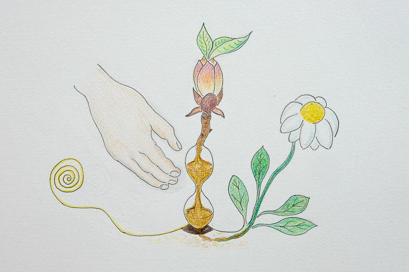 dessin d'un bourgeon sortant d'un sablier, une main cherchant à l'attraper et une fleur