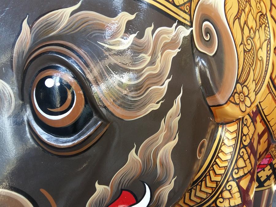 oeil d'éléphant peint