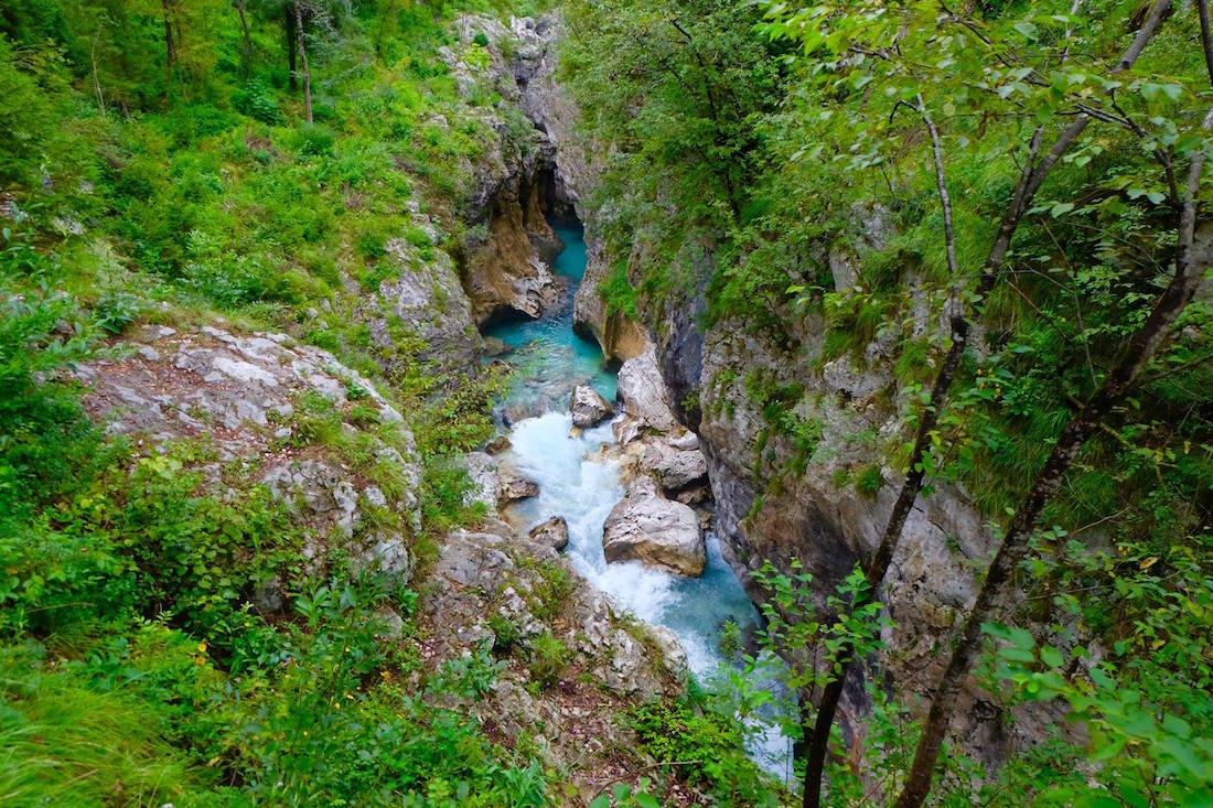 coin de nature en Slovénie