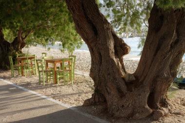 La plage d'Aegiali et ses Tamaris - Amorgos - Cyclades