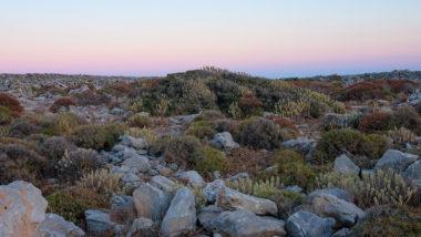 Paysage d'Amorgos - Cyclades - Grèce