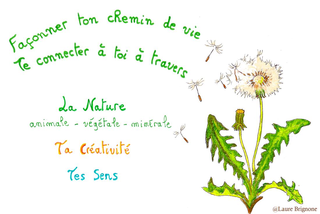 Façonne ton chemin de vie et connecte-toi à travers la nature (animale, végétale, minérale), ta créativité et tes sens
