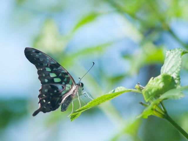 8 étapes pour garder le cap et accepter la transformation dans les périodes bouleversantes