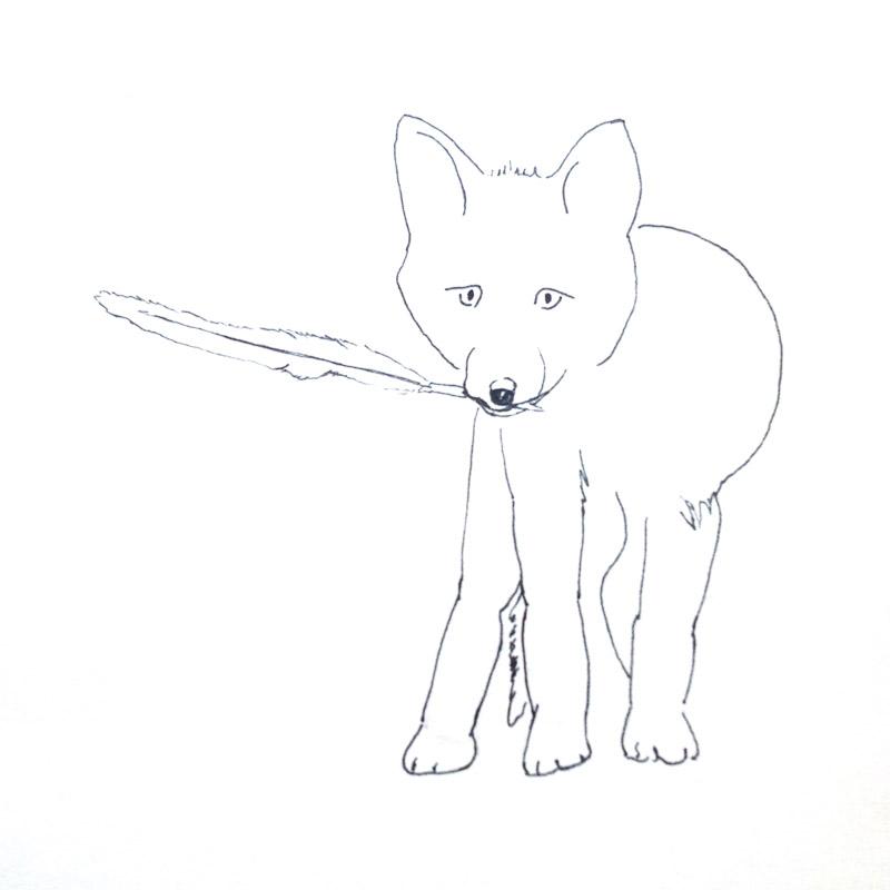 Dessin de renard tenant une plume