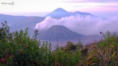 Caldeira du Tengger, mont Bromo, vue du Gunung Penanjakèn, Java, Indonésie