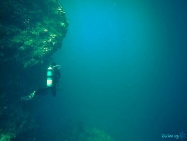 plongeur dans l'immensité