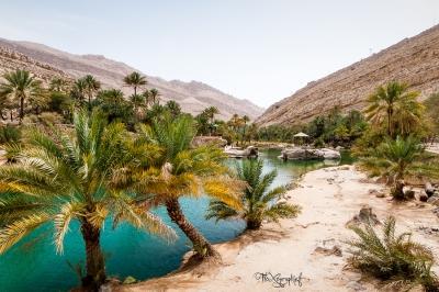 Wadi Bani Khalid - vue globale