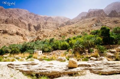 Wadi Tiwi - paysage