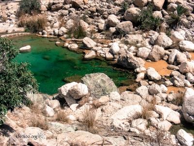Wadi Tiwi - eau