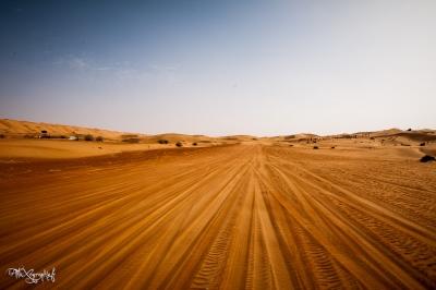 Piste dans les dunes de Wahiba Sands