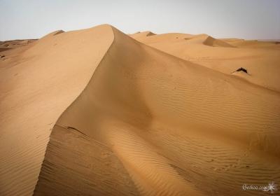 Les dunes de Wahiba Sands