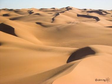 Les dunes de l
